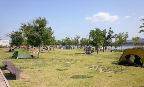 Koreans like to pitch tents for their picnics in the park. I suppose it makes sense.
