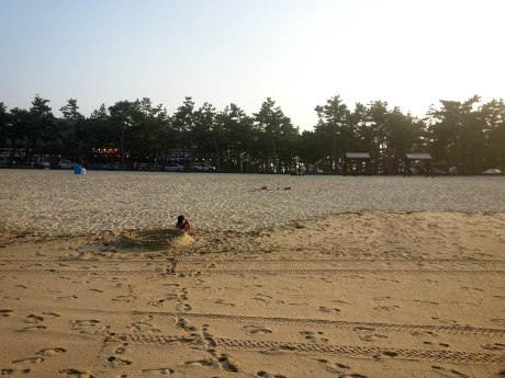 Sand castles against the backdrop of pine trees and Gyeongpo's strip of motels and restaurants.