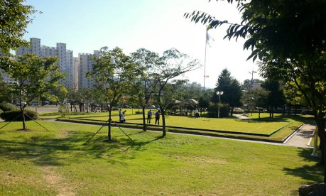 The park in Eumseong where old men gather to play croquet every afternoon.