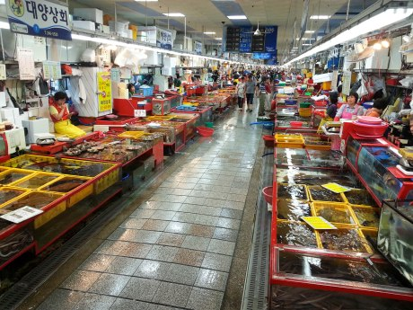 The Jagalchi Fish Market is huge! The rows and rows of stalls seemed to go on forever.