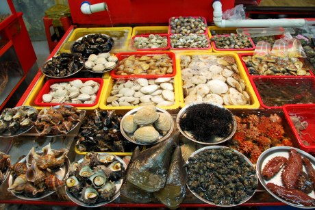 Shellfish, anyone?