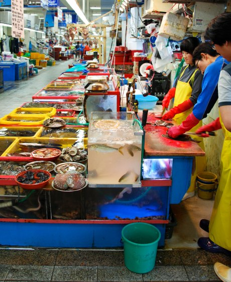 There is a huge dining area in the market as well where you can enjoy the freshly caught fish either cooked or raw.