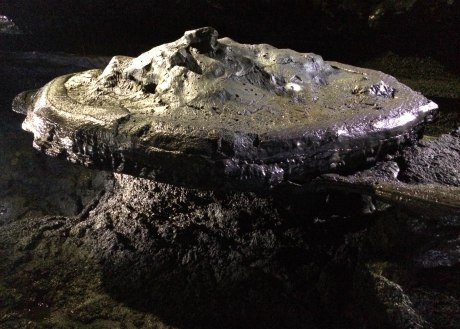 A lava formation that looks a bit like a mushroom in Manjanggul Cave.