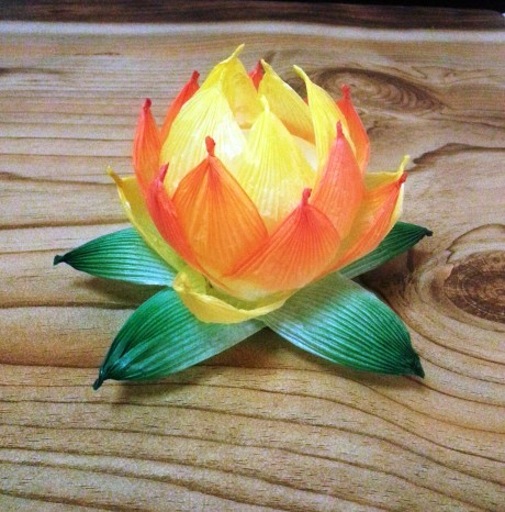 We made lotus flower lanterns out of rice paper.