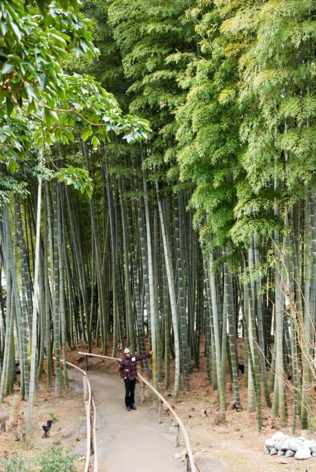Charlie and the giant bamboo.